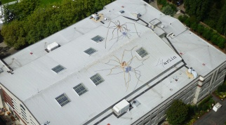 spider-rooftop_940