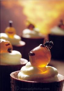 honeypot-ant-cupcake-peter-menzel-man-eating-bugs-copy