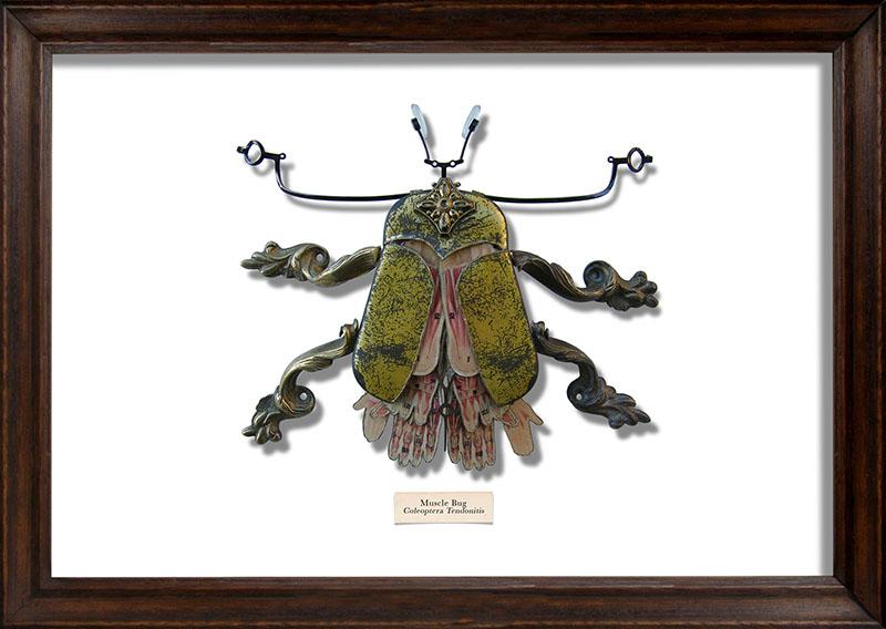 Muscle-Bug